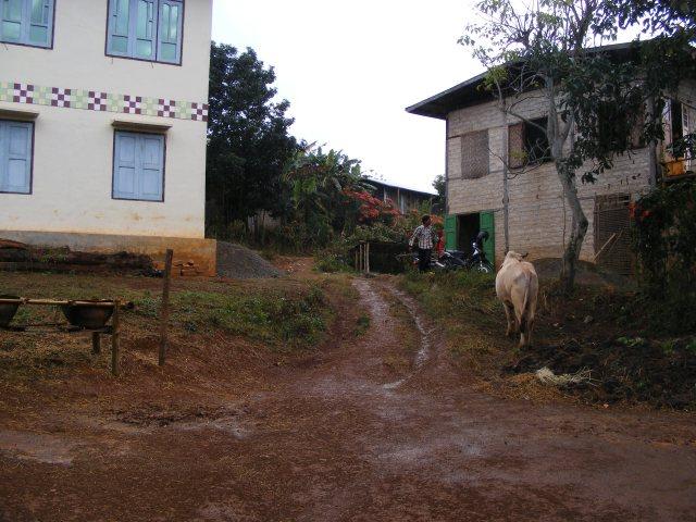Trek entre Kalaw et Inle